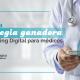 Cuál es la estrategia ganadora de Marketing Digital para médicos - Marketing Digital para Médicos - BTODigital